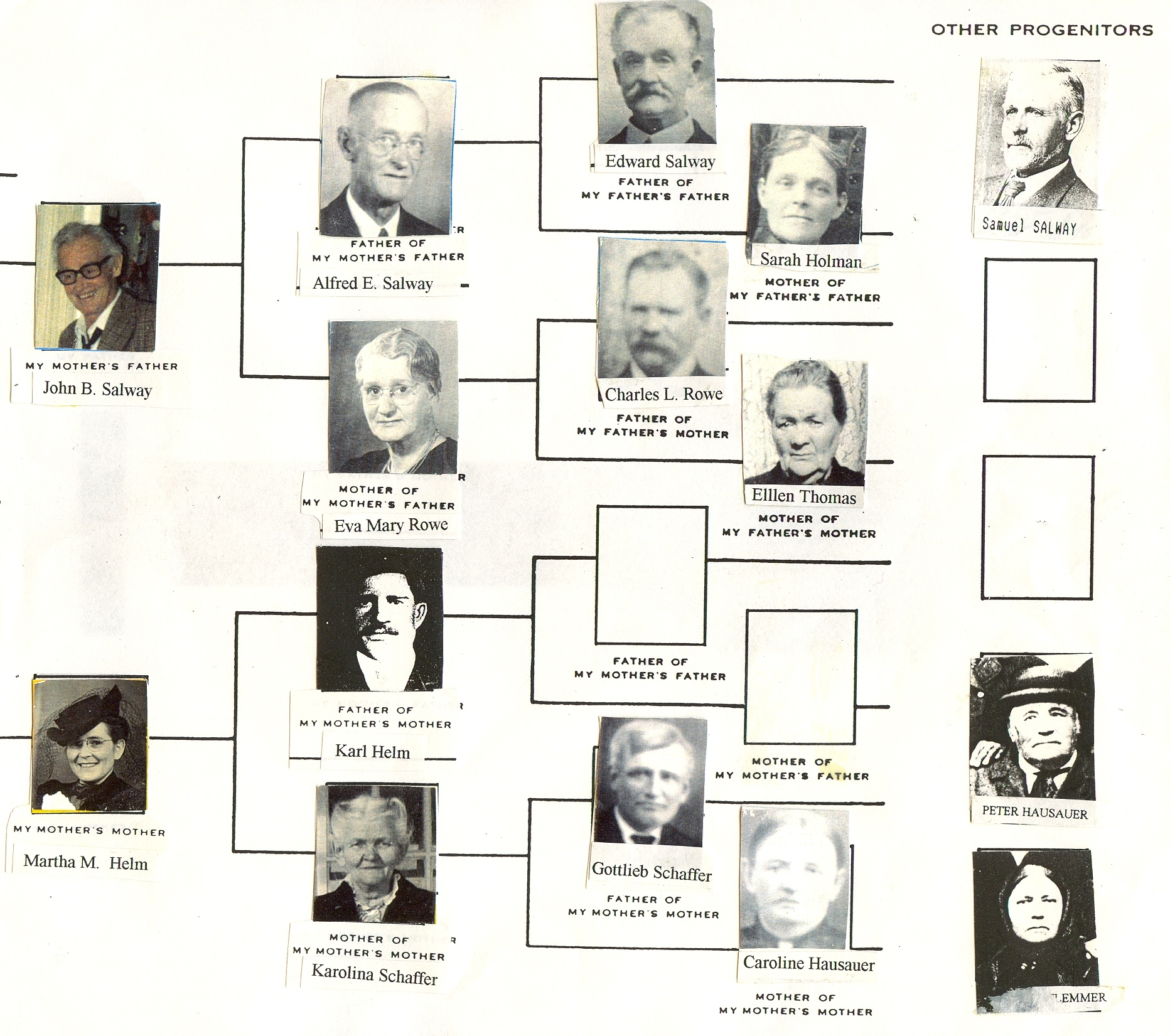 Salway-pedigree-chart